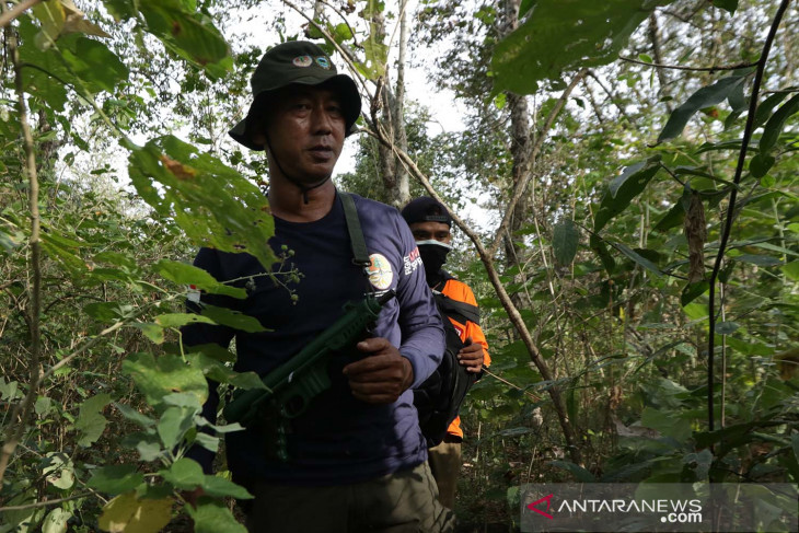 Illegal hunting prevention in Baluran National Park