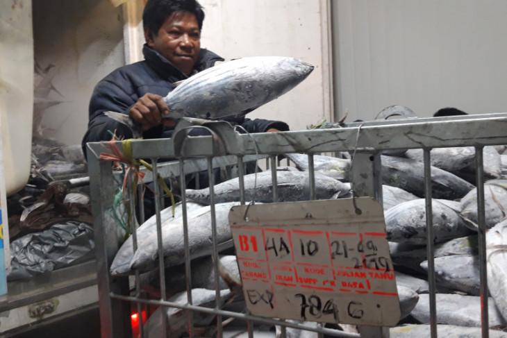 Komoditi ikan dan udang penyumbang ekspor Malut manfaatkan peluang pasar