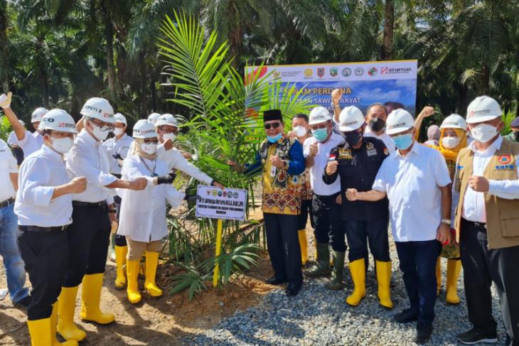 Vaksinasi COVID-19 dan peremajaan sawit dilakukan bersamaan di Kotabaru