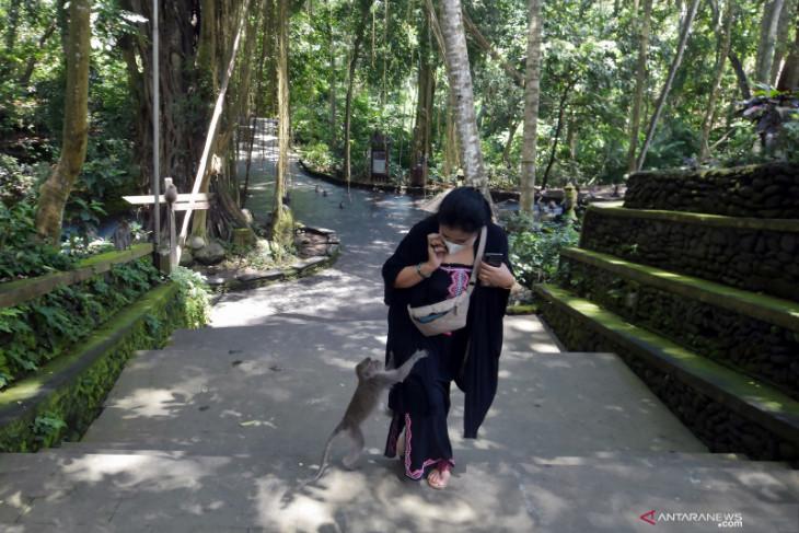 Deputy governor urges Indonesian ambassadors to promote Bali tourism