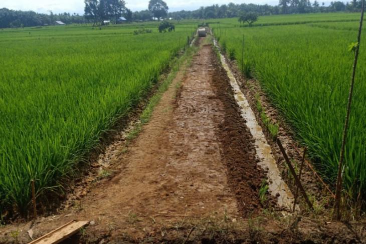 Mukomuko targetkan pembangunan jalan usaha tani tuntas Oktober