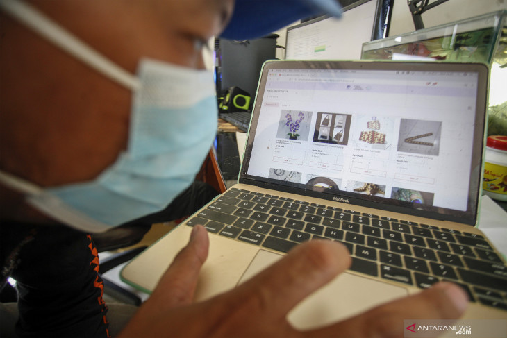 MSMEs need to focus on digital literacy in future: Indef