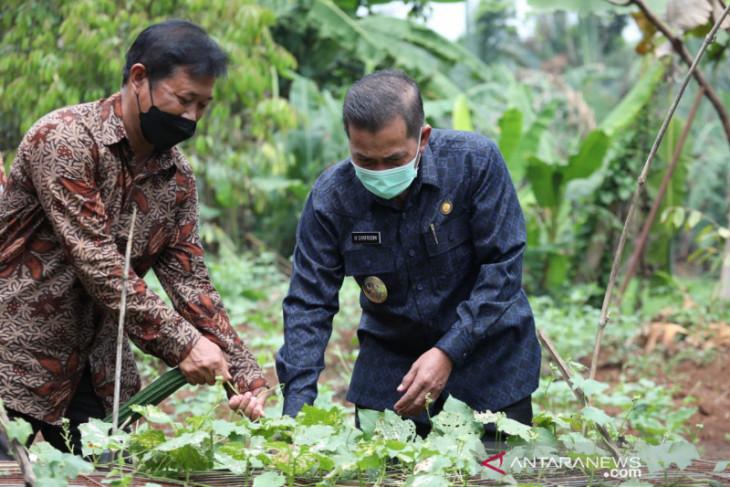 Wali Kota Serang meresmikan rintisan kampung wisata edukasi