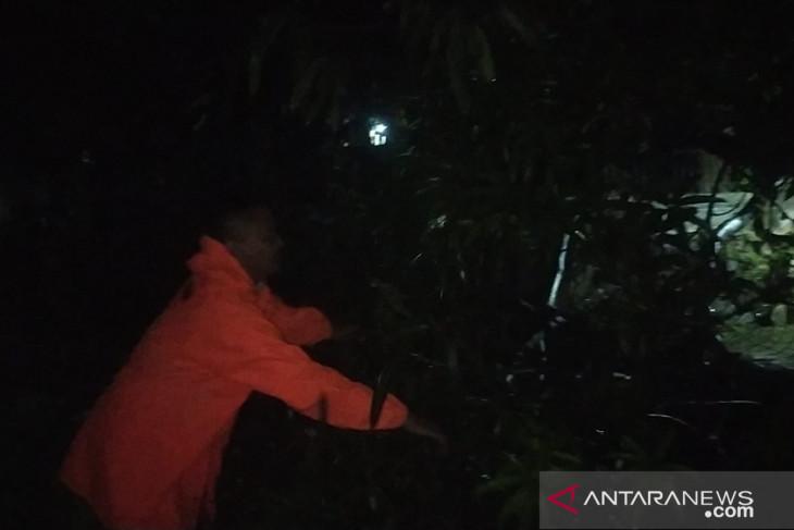 Warga Sukabumi diimbau waspada pohon tumbang saat hujan deras