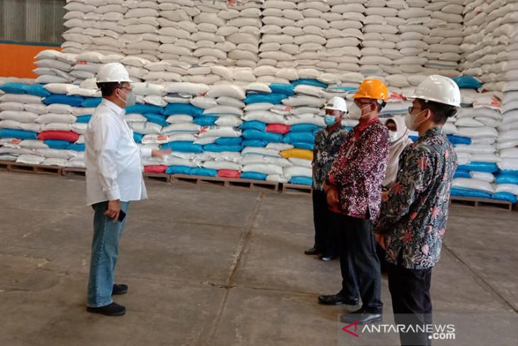 Dirut Bulog Budi Waseso cek stok beras Maluku begini penjelasannya