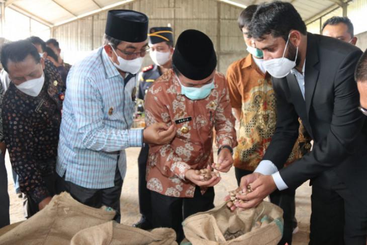 Provinsi Jambi ekspor 18 ton pinang ke Arab Saudi