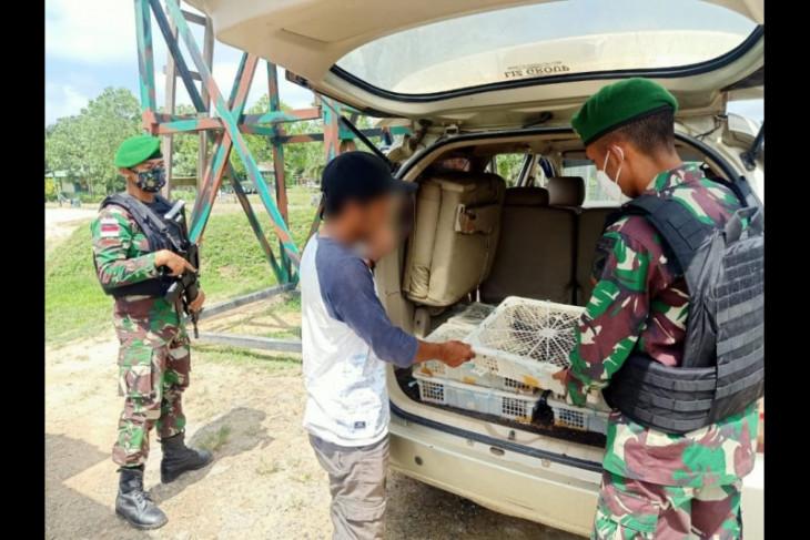 Satgas Pamtas 643/Wns gagalkan penyelundupan ratusan satwa asal Malaysia