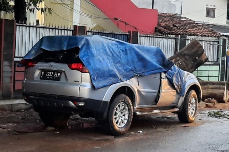 Mobil tertimpa pohon tumbang di Depok, dua orang terluka