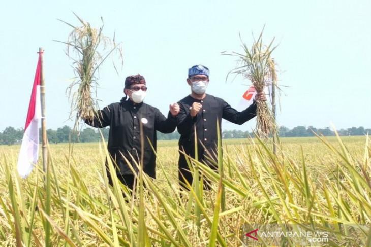 Ketua Majelis Syura PKS  sampaikan agar negara lindungi dan sejahterakan petani