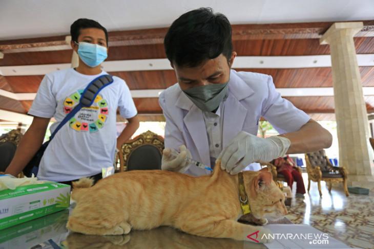 Vaksin rabies gratis di Indramayu