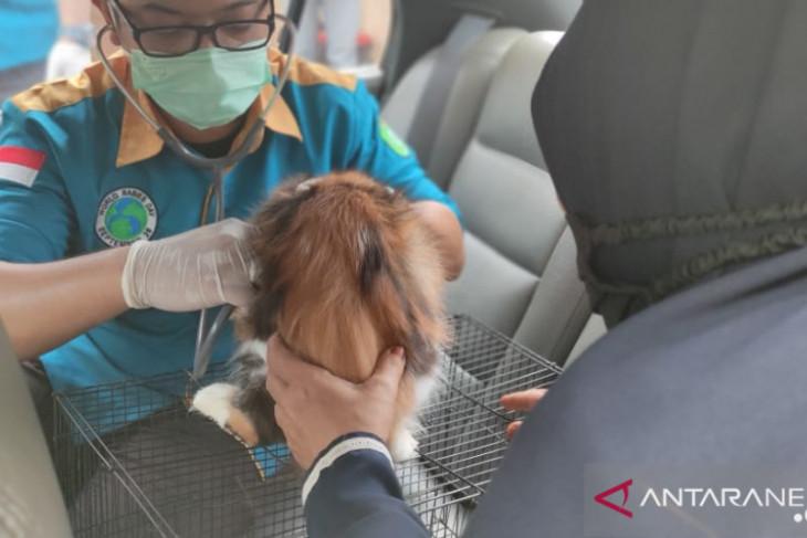 Kalbar tingkatkan partisipasi masyarakat lawan rabies