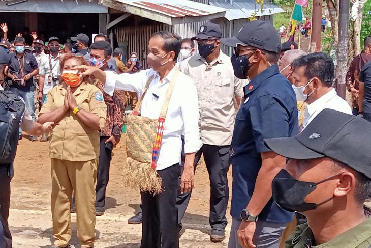Presiden minta Provinsi Papua Barat tingkatkan produktivitas pertanian