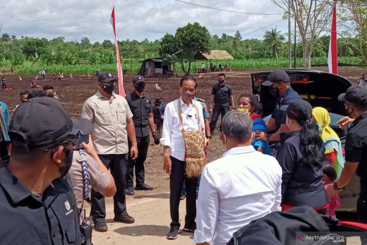 Presiden Jokowi dorong peningkatan kualitas petani muda Papua Barat