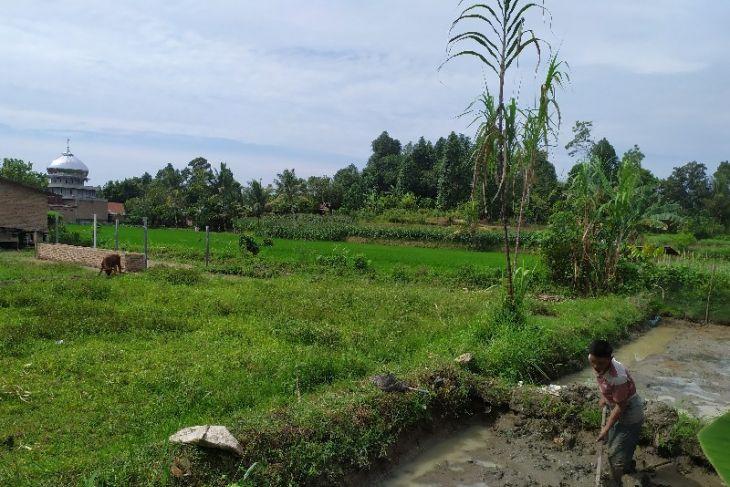 KPHB upayakan peningkatan kesejahteraan petani Simalungun