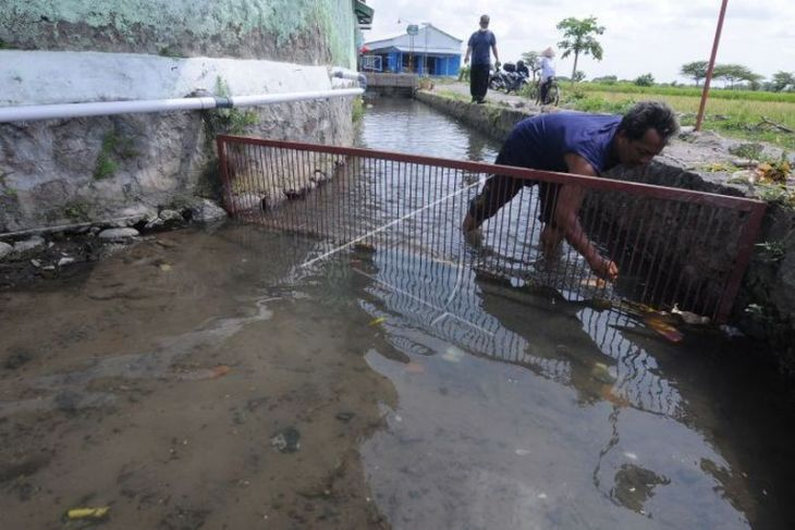 Memanfaatkan sungai untuk budidaya ikan