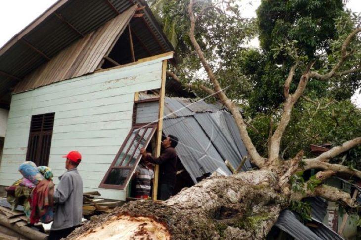 BMKG prakirakan angin kencang landa sebagian wilayah Indonesia, Jambi berpotensi hujan