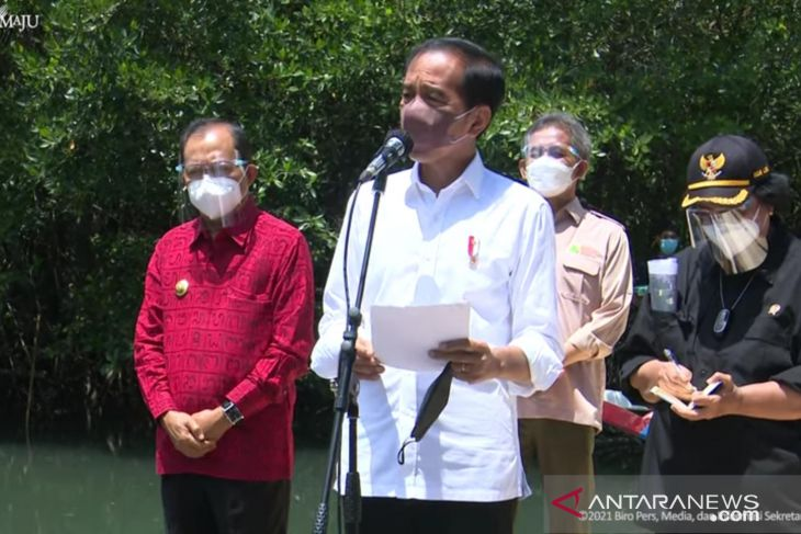 Presiden ingin daerah lain contoh rehabilitasi mangrove Bali