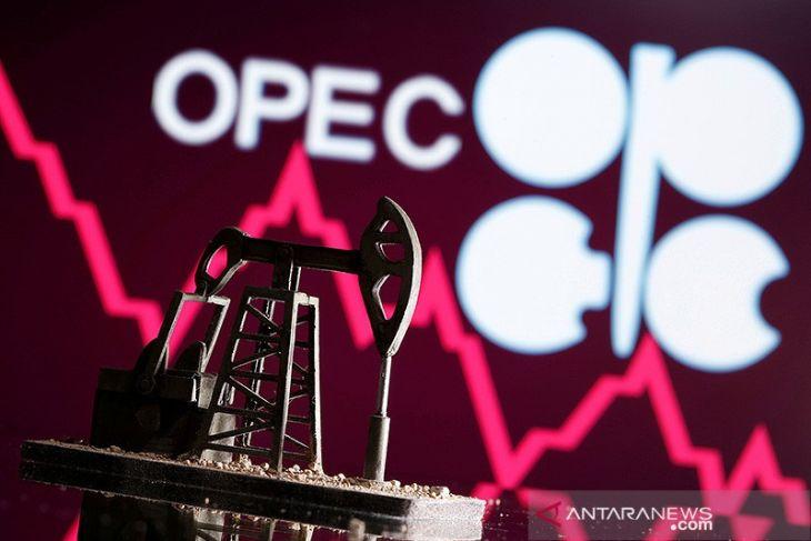 OPEC pangkas perkiraan permintaan 2021,  sebut lonjakan gas membantu