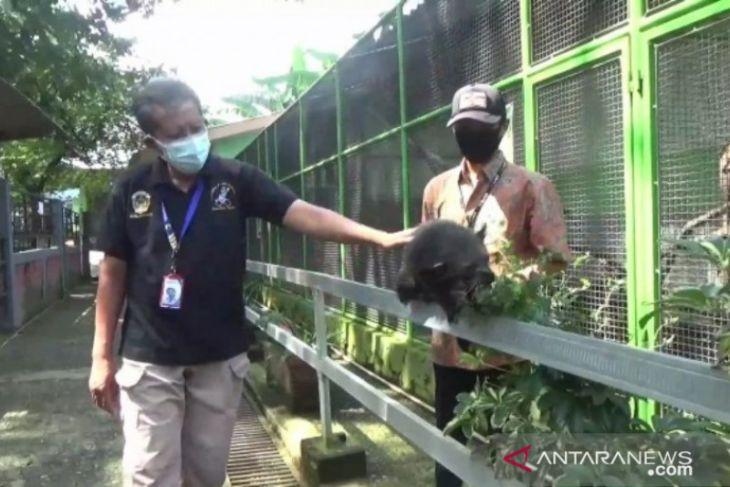 Empat tempat wisata di Madiun terapkan aplikasi PeduliLindungi