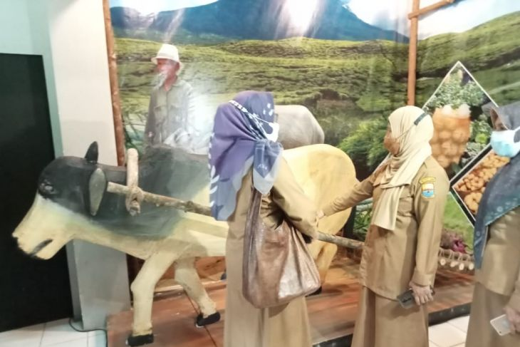 Hari museum nasional, Museum Siginjei pamerkan alat angkut dan trasportasi tradisional Jambi