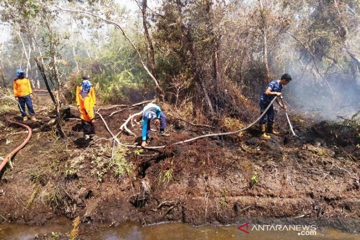 Luas lahan terbakar di Aceh Barat bertambah jadi 2,2 hektare