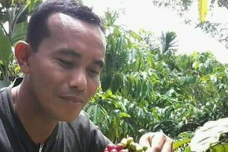 Ini potensi robusta  di Aceh Jaya