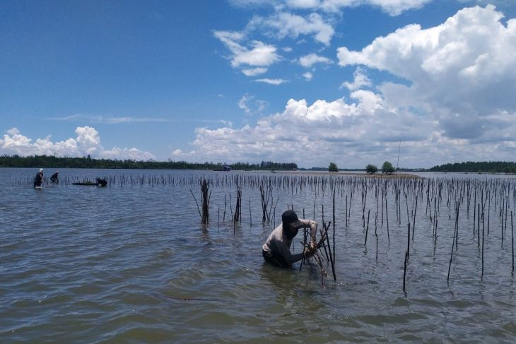 BRGM, Unmul provide training on eco-friendly aquaculture