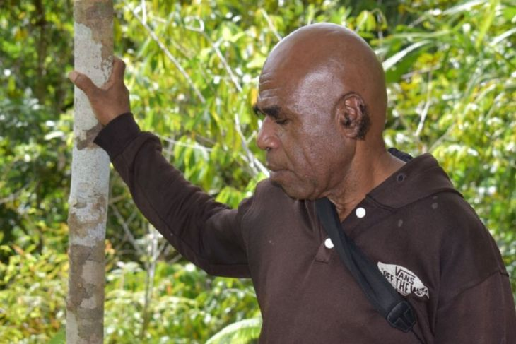 Meet Waisimon, protector of the cenderawasih and forests