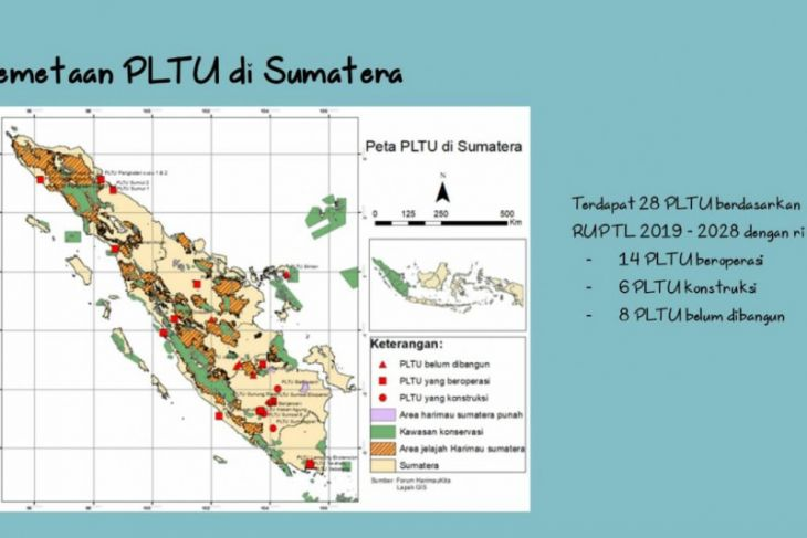 PLTU batu bara ancam gajah dan harimau Sumatera