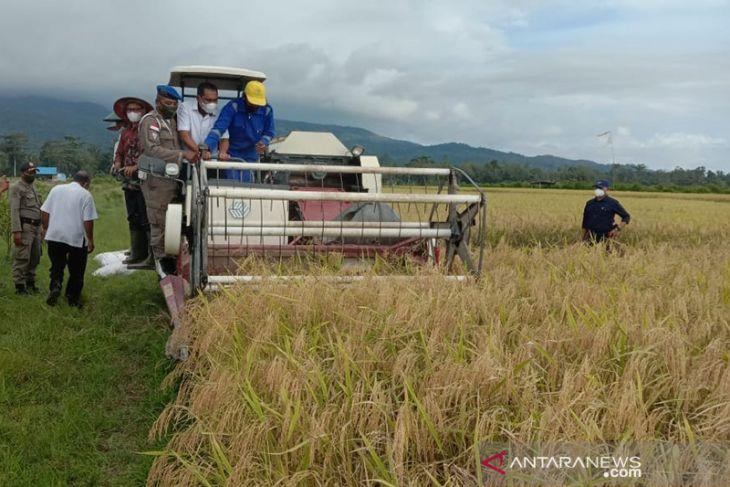SBB tingkatkan produksi untuk jadi sentra produksi beras Maluku