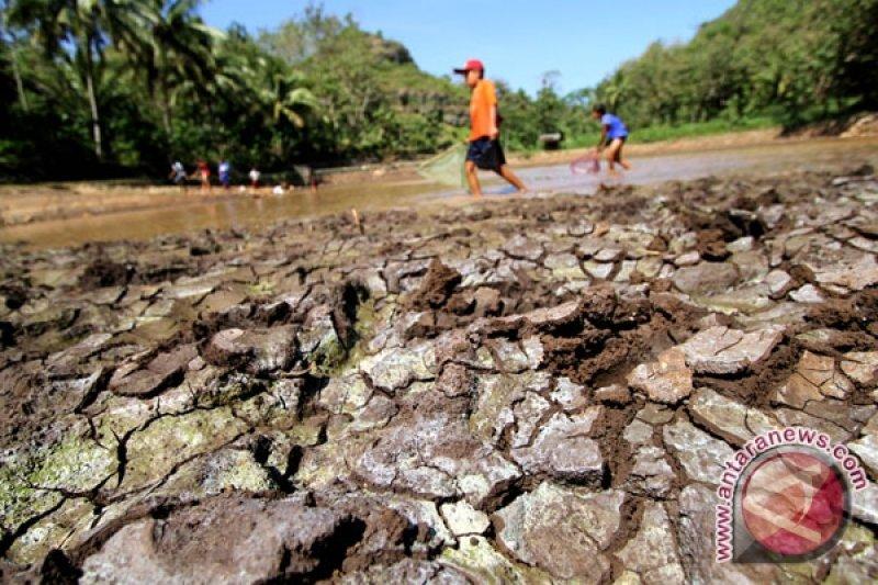 Telaga di Gunung Kidul tercemar bakteri e-coli
