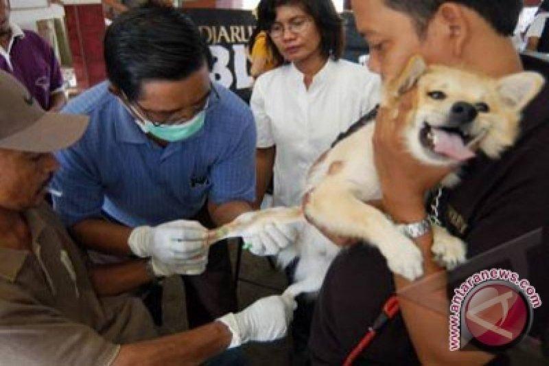 Dinas Pertanian dan Pangan terima banyak permintaan sterilisasi hewan