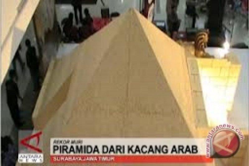 Piramida Kacang Arab Raih Rekor MURI