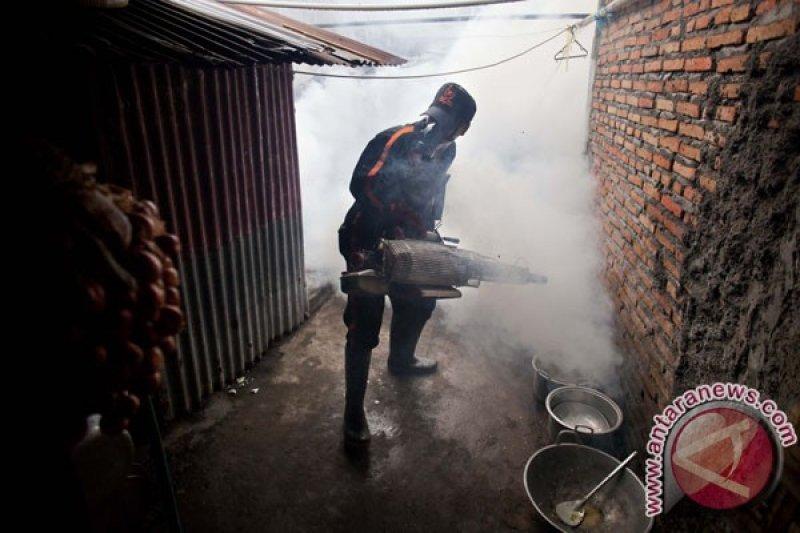 Kota Yogyakarta menggiatkan pemberantasan sarang nyamuk
