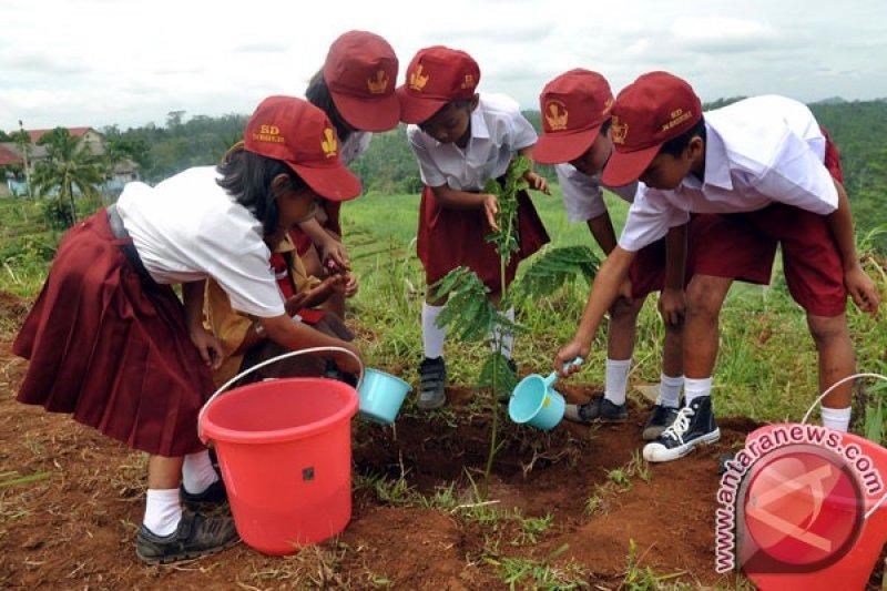 Temanggung siapkan 125 ribu bibit pohon untuk hijaukan lahan kritis