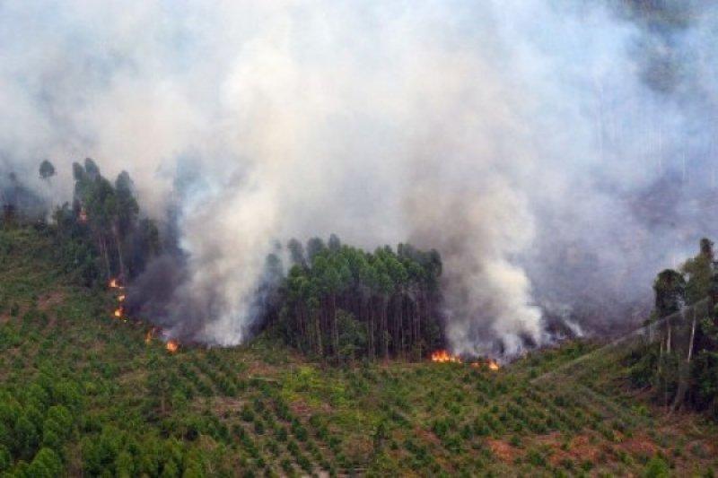 150 titik panas terpantau di Sumatera, empat titik di Sumbar