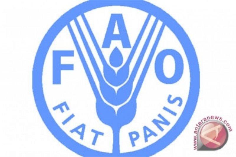 FAO mengapresiasi sektor pertanian Indonesia