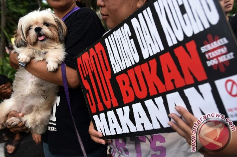 Siem Reap larang penjualan daging anjing