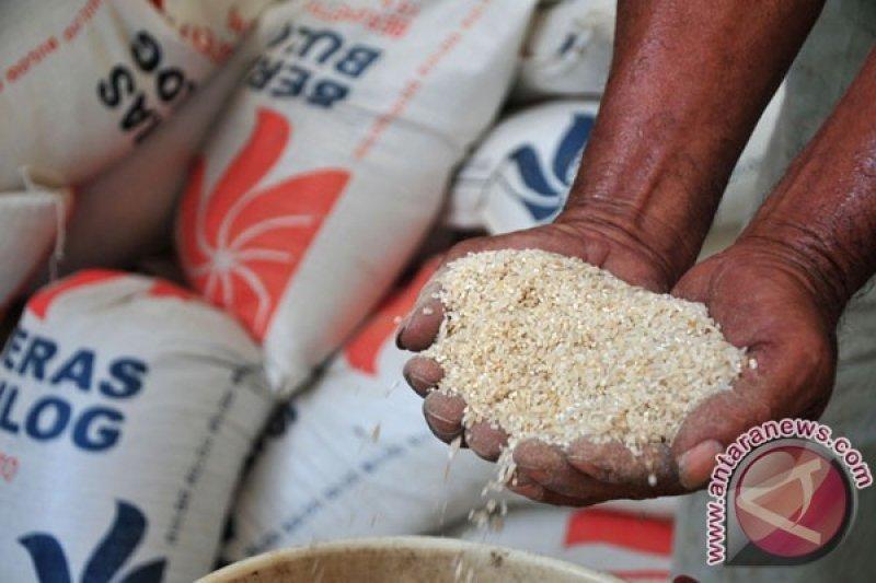 Temuan beras busuk, ini kata mantan Dirut Bulog