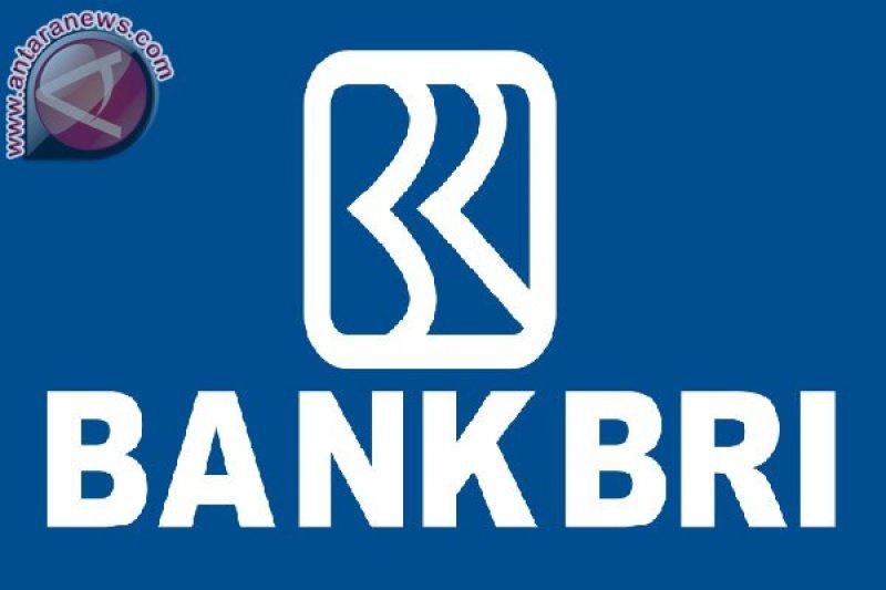 Bank BRI luncurkan kartu tani di Maros