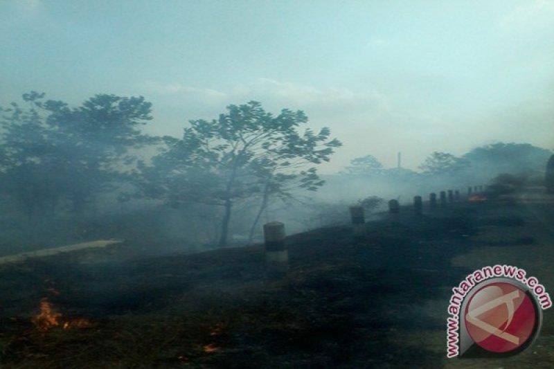 Warga Mesuji Lampung Keluhkan Dampak Kabut Asap