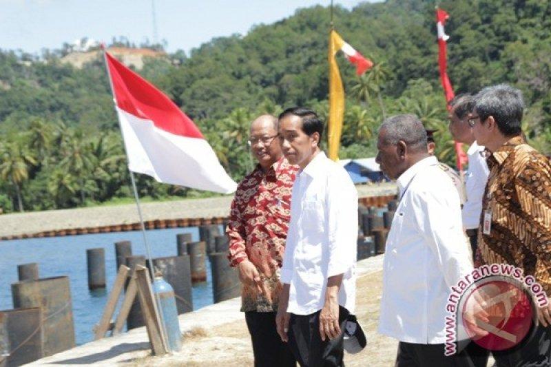 Kadin apresiasi Presiden prioritaskan pembangunan Papua