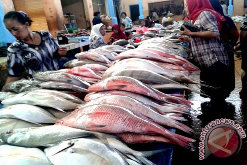 Polda Lampung sita 5 ton ikan berformalin
