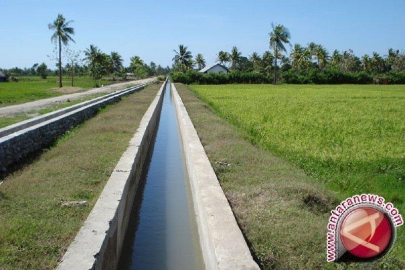 Pemprov Sumsel alokasikan Rp84 miliar perbaiki irigasi