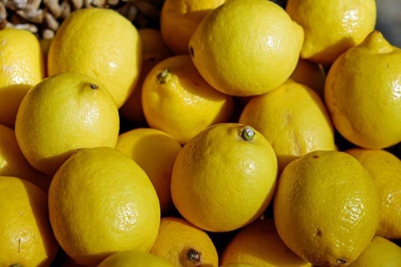 Manfaat Minum Air Lemon Setiap Pagi Antara News