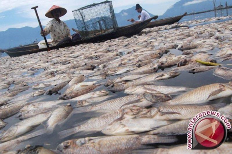 Balai KIPM Palembang tingkatkan pemantauan penyakit ikan