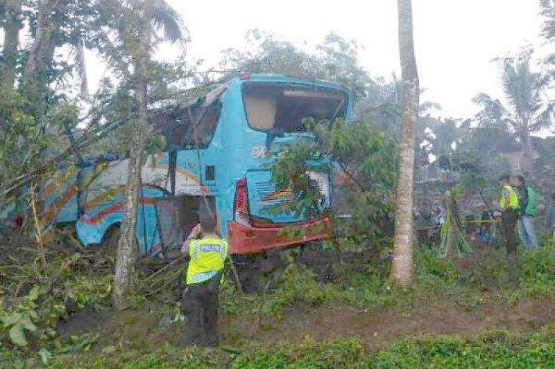 Bus Masuk Jurang, Empat Tewas