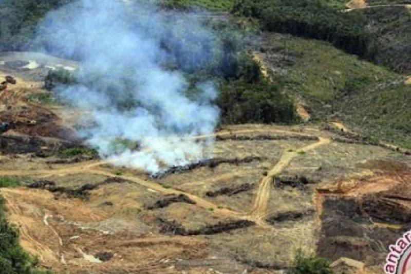 Gara-gara asap, gubernur Riau protes gubernur Jambi dan Sumsel terkait asap