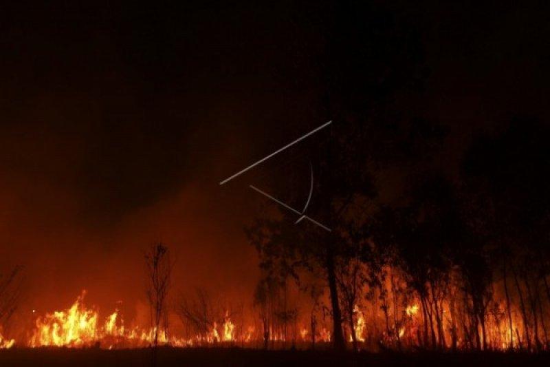 Presiden panggil Siti Nurbaya terkait kebakaran hutan