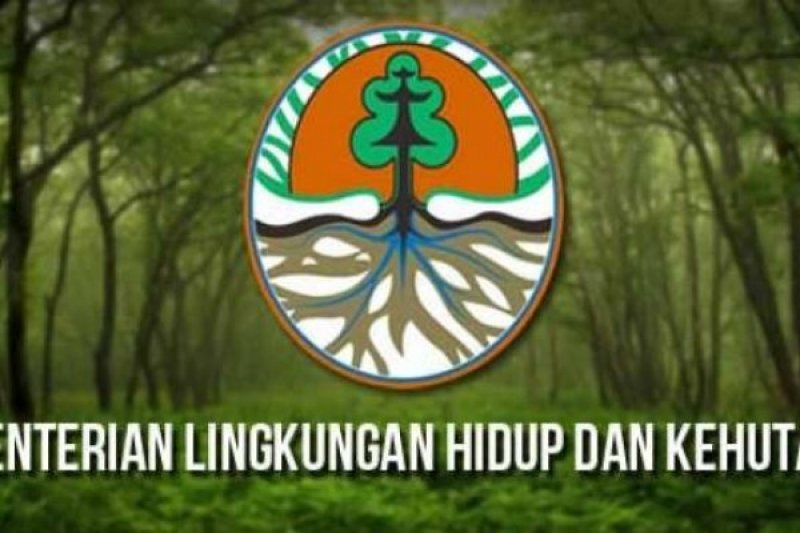 Program Perhutanan Sosial Petani Riau Dapatkan Dukungan Langsung KLHK